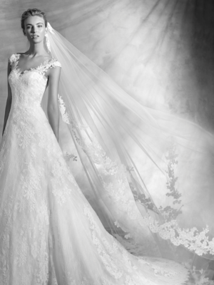 Viorel Atelier Pronovias Mira Couture Wedding Bridal Gown Chicago